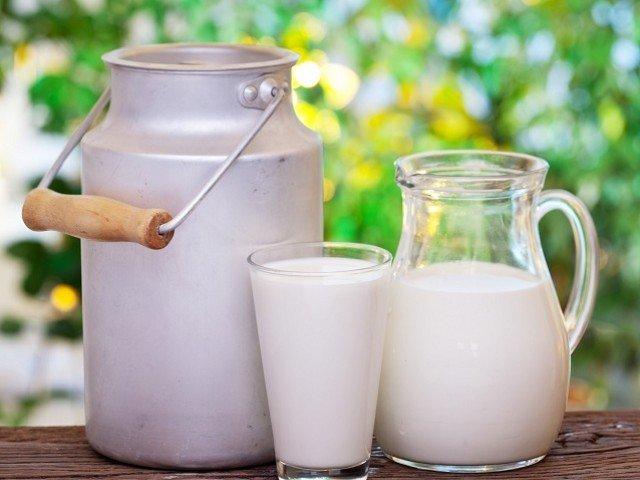 significado de sonhar com leite