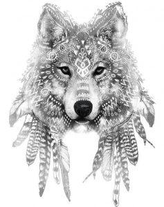 contorno de lobo