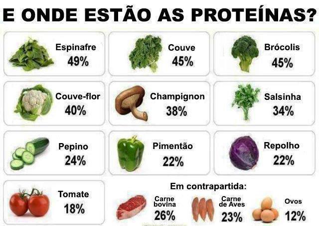 dieta na base de proteinas