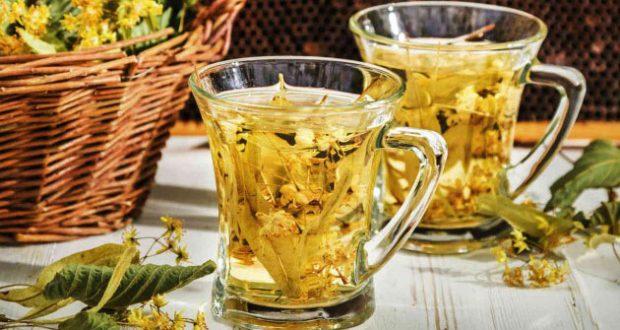chá de carqueja. beneficios
