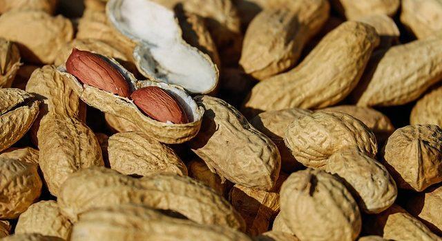 cha de amendoim