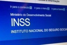Conheça os tipos de consulta do INSS que podem ser feitos pela internet